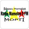 Radio Mamelon 5 - Mopti hören