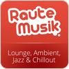 RauteMusik.FM Lounge hören