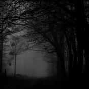 Radio Caprice - Atmospheric/Ambient Black Metal/Dungeon Synth