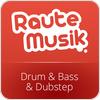 RauteMusik.FM Drumstep hören