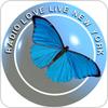 Radio Love Live hören