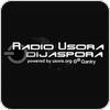 Radio Usora Dijaspora - Folk  hören
