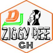 Dj Ziggy Bee pro