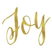 joy-radioclub