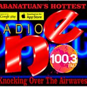 Radio NE FM 100.3 Gapan City