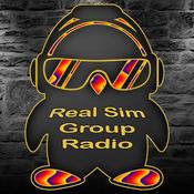 real-sim-group