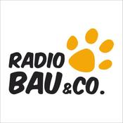 RMC 1 - Radio Bau